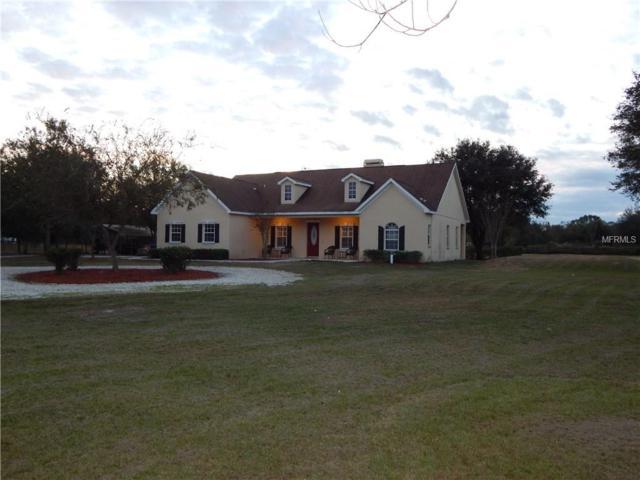 6633 Lake Irene Drive, Land O Lakes, FL 34638 (MLS #T2918978) :: Arruda Family Real Estate Team