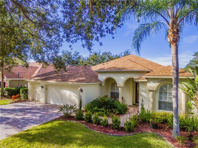 18712 Chemille Drive, Lutz, FL 33558 (MLS #T2918984) :: White Sands Realty Group