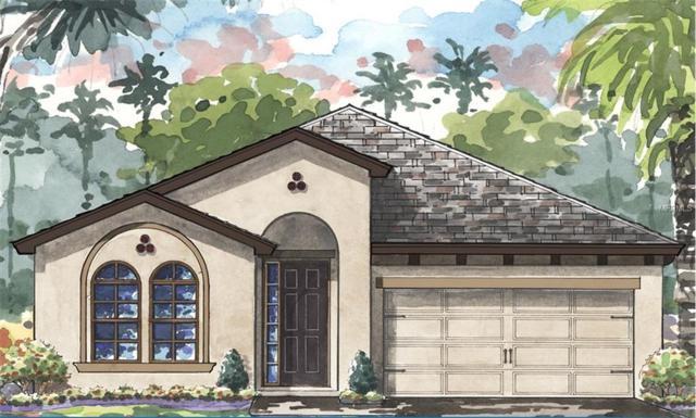 4100 Revival Lane, Land O Lakes, FL 34638 (MLS #T2919006) :: Arruda Family Real Estate Team
