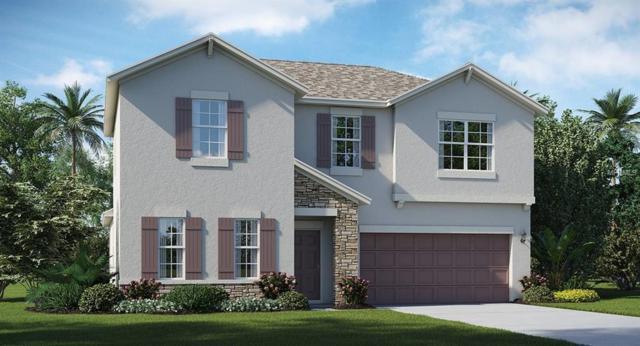 14011 Tropical Kingbird Way, Riverview, FL 33579 (MLS #T2919012) :: Arruda Family Real Estate Team