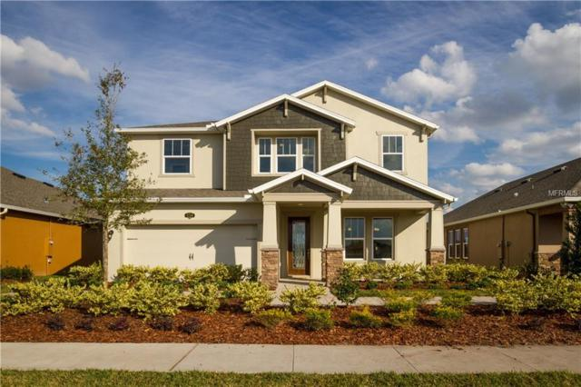 1740 Nature View Drive, Lutz, FL 33558 (MLS #T2919013) :: Arruda Family Real Estate Team