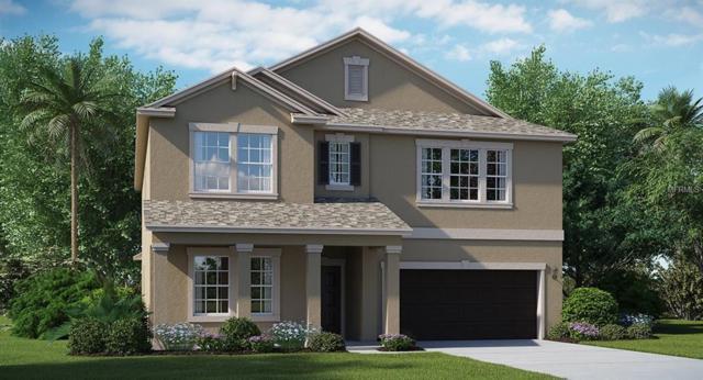 14017 Tropical Kingbird Way, Riverview, FL 33579 (MLS #T2919021) :: Arruda Family Real Estate Team