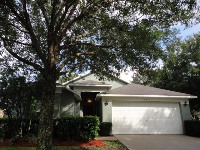 18951 Wood Sage Drive, Tampa, FL 33647 (MLS #T2919088) :: Team Bohannon Keller Williams, Tampa Properties