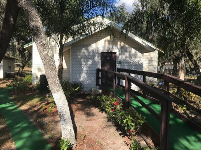 15132 Dr Martin Luther King Jr Boulevard, Dover, FL 33527 (MLS #T2919158) :: The Duncan Duo Team