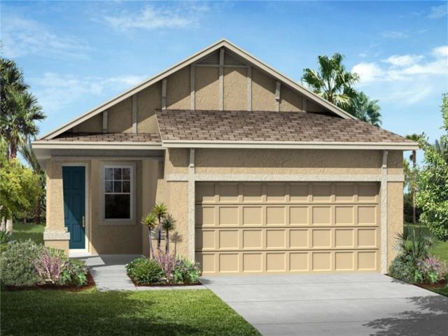 25704 Boysen Berry Avenue, Englewood, FL 34223 (MLS #T2919402) :: Medway Realty
