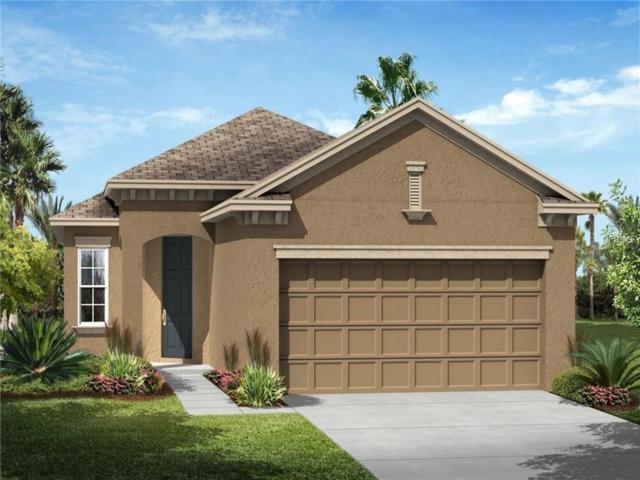 25700 Boysen Berry Avenue, Englewood, FL 34223 (MLS #T2919408) :: Medway Realty