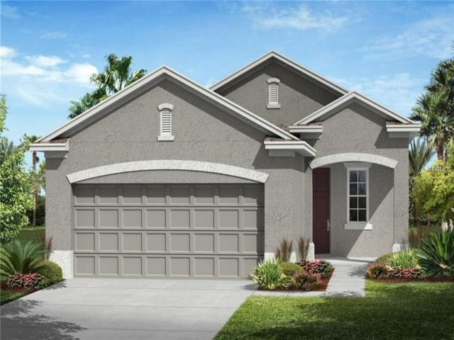 9912 Sheltering Spruce Street, Englewood, FL 34223 (MLS #T2919623) :: Medway Realty
