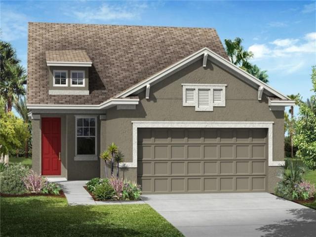 25808 Grayton Avenue, Englewood, FL 34223 (MLS #T2919864) :: Medway Realty