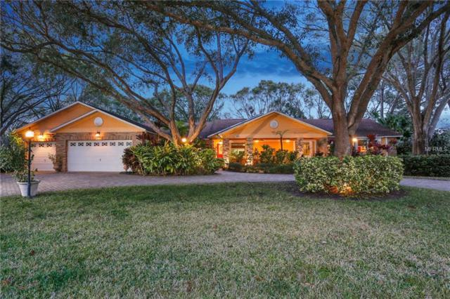 12511 Palomino Court, Tampa, FL 33626 (MLS #T2920010) :: Delgado Home Team at Keller Williams
