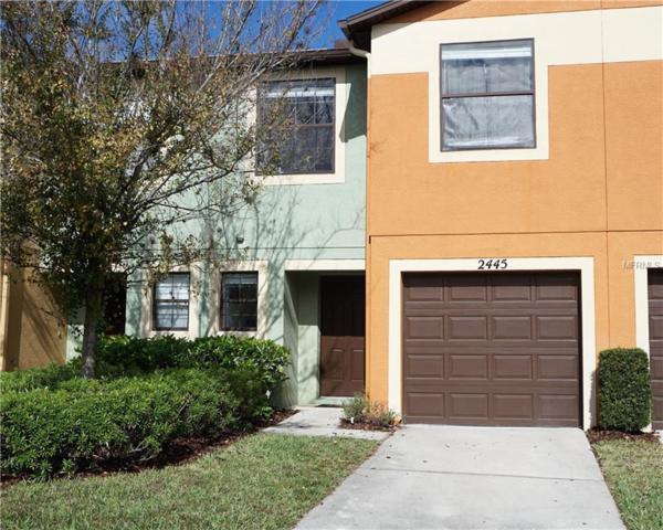 2445 Hibiscus Bay Lane, Brandon, FL 33511 (MLS #T2921158) :: Griffin Group