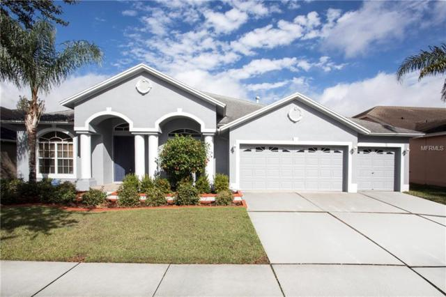 19109 Nature Palm Lane, Tampa, FL 33647 (MLS #T2921573) :: Team Bohannon Keller Williams, Tampa Properties