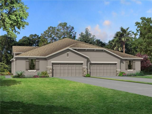 19379 Hawk Valley Drive, Tampa, FL 33647 (MLS #T2921724) :: Griffin Group