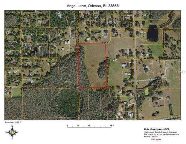 1, Odessa, FL 33556 (MLS #T2921962) :: Team Bohannon Keller Williams, Tampa Properties