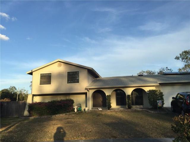730 Caliente Drive, Brandon, FL 33511 (MLS #T2922060) :: The Lockhart Team