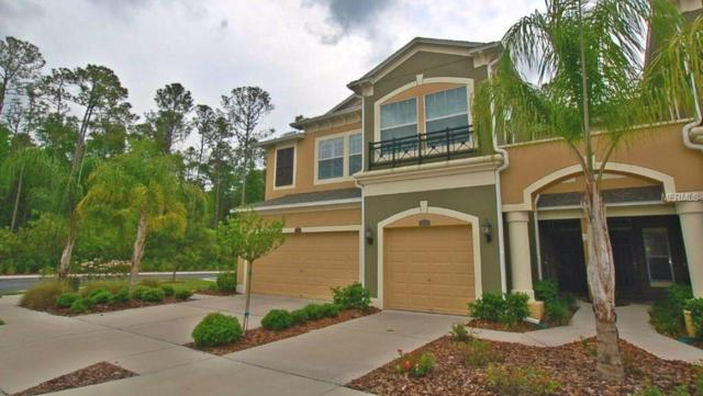 12540 Silverdale Street, Tampa, FL 33626 (MLS #T2922085) :: Delgado Home Team at Keller Williams