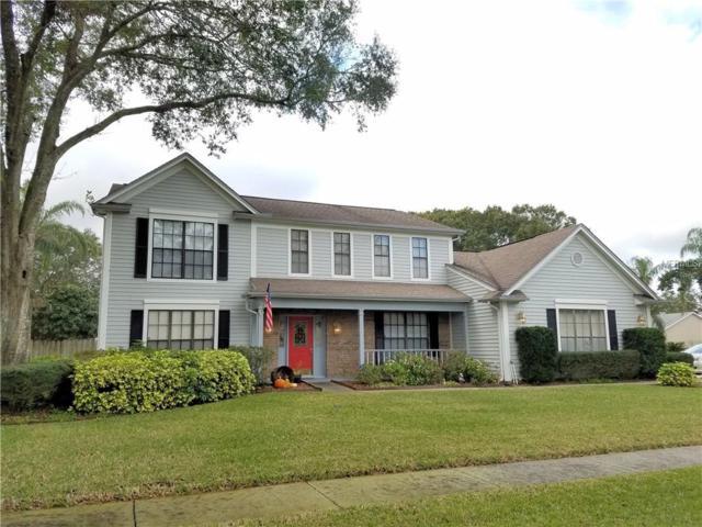 15701 Indian Queen Drive, Odessa, FL 33556 (MLS #T2922641) :: Team Bohannon Keller Williams, Tampa Properties