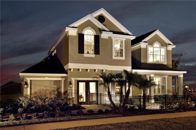 19301 Yellow Clover Drive, Tampa, FL 33647 (MLS #T2922810) :: Team Bohannon Keller Williams, Tampa Properties