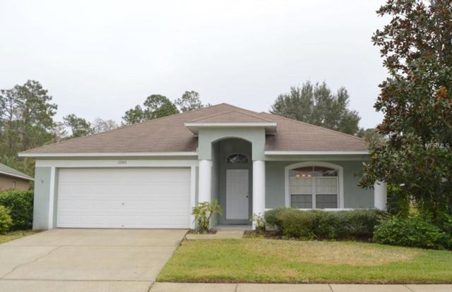 12513 Deerberry Lane, Tampa, FL 33626 (MLS #T2922884) :: Delgado Home Team at Keller Williams
