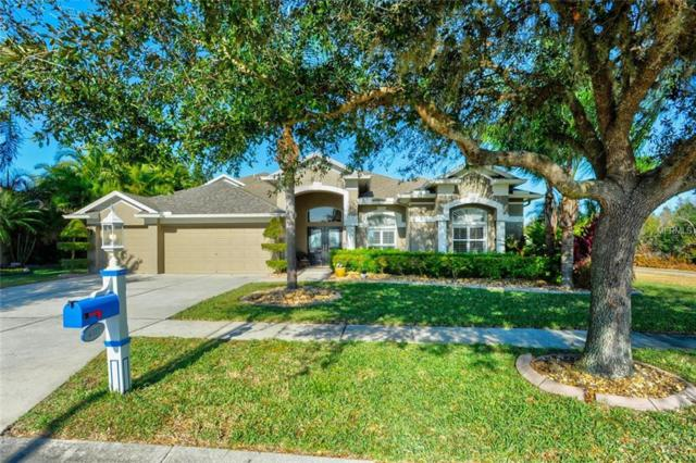 4317 Waterford Landing Drive, Lutz, FL 33558 (MLS #T2922926) :: Griffin Group