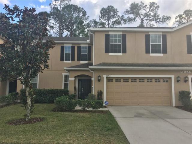 20531 Grand Vista Lane, Tampa, FL 33647 (MLS #T2922938) :: Team Bohannon Keller Williams, Tampa Properties