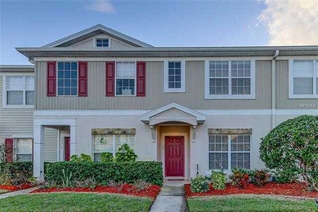 16308 Swan View Circle, Odessa, FL 33556 (MLS #T2923025) :: Griffin Group