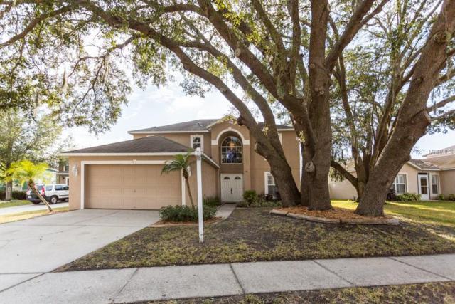 4631 Tucson Court, Valrico, FL 33594 (MLS #T2923035) :: Team Bohannon Keller Williams, Tampa Properties