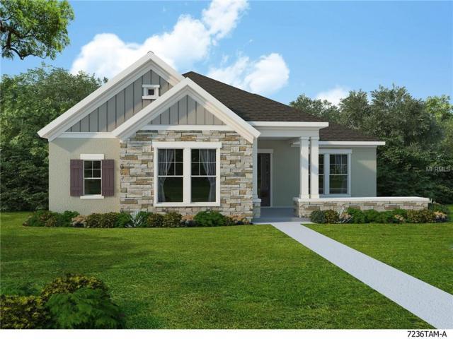 14012 Kingfisher Glen Drive, Lithia, FL 33547 (MLS #T2923099) :: The Lockhart Team