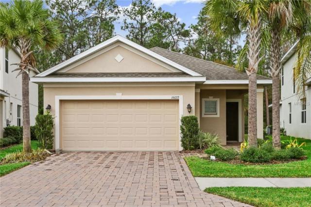 16072 Bella Woods Drive, Tampa, FL 33647 (MLS #T2923197) :: Team Bohannon Keller Williams, Tampa Properties