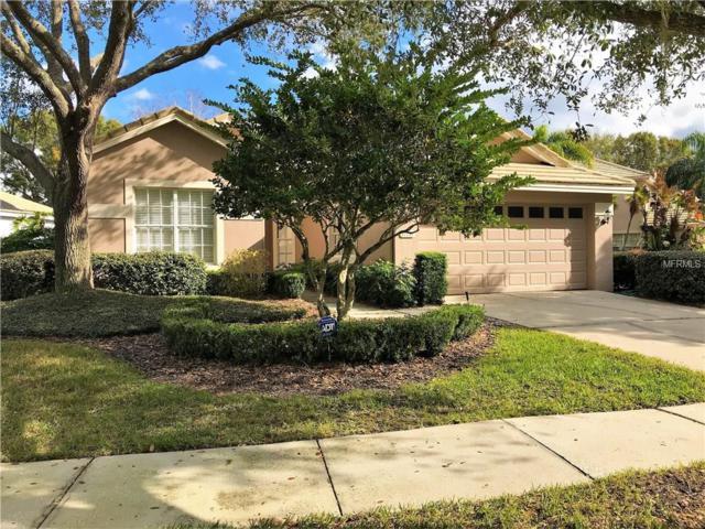 17717 Nathans Drive, Tampa, FL 33647 (MLS #T2923198) :: Team Bohannon Keller Williams, Tampa Properties