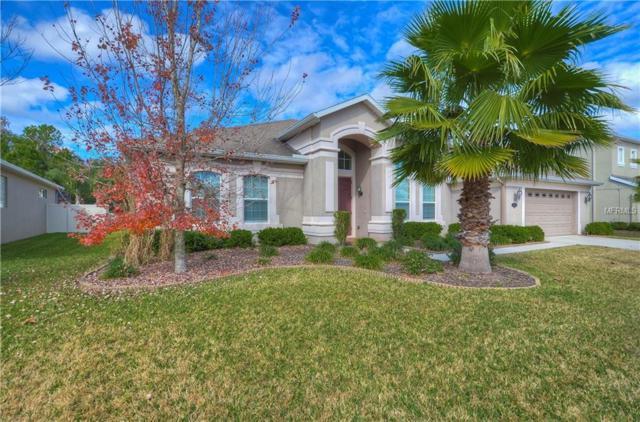20326 Natures Corner Drive, Tampa, FL 33647 (MLS #T2923218) :: Delgado Home Team at Keller Williams