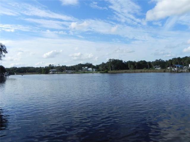 10816 Magnolia Street, Riverview, FL 33569 (MLS #T2923241) :: The Lockhart Team
