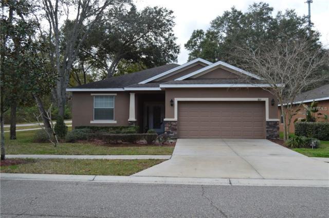 8611 Olive Moss Court, Riverview, FL 33569 (MLS #T2923338) :: Team Bohannon Keller Williams, Tampa Properties