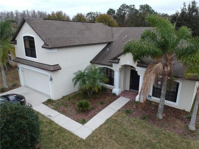 15228 Princewood Lane, Land O Lakes, FL 34638 (MLS #T2923351) :: Griffin Group