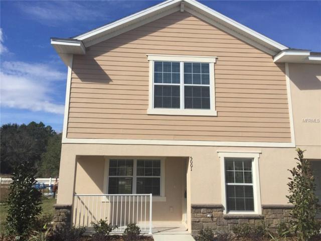 5001 Chipotle Lane, Wesley Chapel, FL 33544 (MLS #T2923423) :: Team Bohannon Keller Williams, Tampa Properties