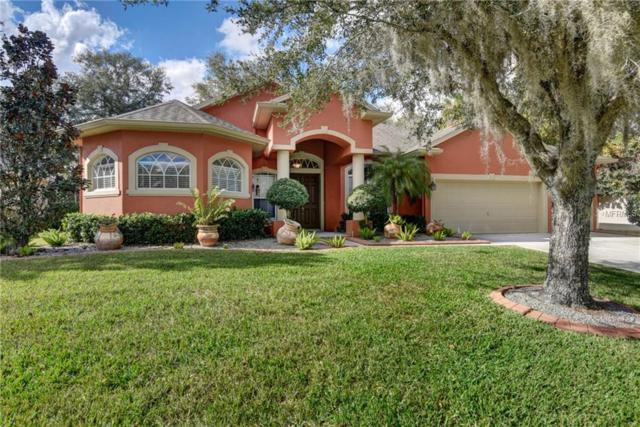 Lutz, FL 33559 :: Delgado Home Team at Keller Williams