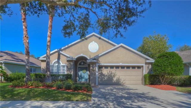 3243 Stonebridge Trail, Valrico, FL 33596 (MLS #T2923480) :: Team Bohannon Keller Williams, Tampa Properties