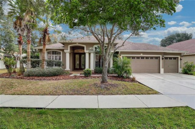 8361 Golden Prairie Drive, Tampa, FL 33647 (MLS #T2923506) :: Team Bohannon Keller Williams, Tampa Properties