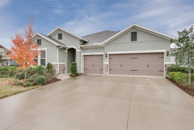 1317 Charleen Street, Brandon, FL 33511 (MLS #T2923521) :: Team Bohannon Keller Williams, Tampa Properties
