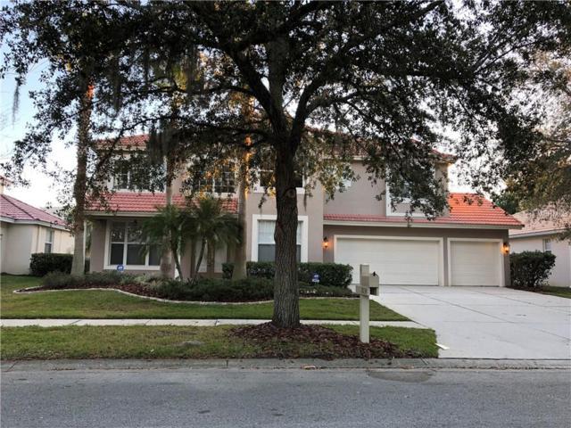 18134 Regents Square Drive, Tampa, FL 33647 (MLS #T2923570) :: Team Bohannon Keller Williams, Tampa Properties
