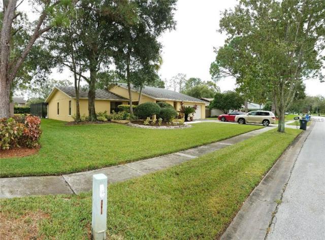 13917 Middle Park Drive, Tampa, FL 33624 (MLS #T2923587) :: Team Bohannon Keller Williams, Tampa Properties