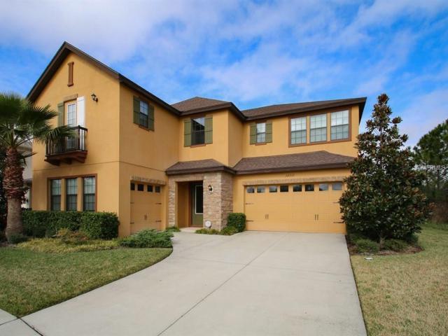 32737 Summerglade Drive, Wesley Chapel, FL 33545 (MLS #T2923589) :: Team Bohannon Keller Williams, Tampa Properties