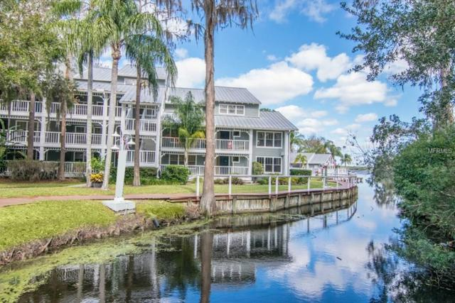 2533 Dolly Bay Drive #304, Palm Harbor, FL 34684 (MLS #T2923619) :: Chenault Group