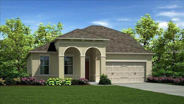 19142 Long Lake Ranch Boulevard, Lutz, FL 33558 (MLS #T2923659) :: Delgado Home Team at Keller Williams