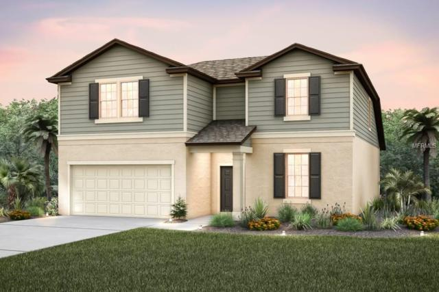 9319 Tradewater Oaks, Riverview, FL 33578 (MLS #T2923673) :: Team Bohannon Keller Williams, Tampa Properties