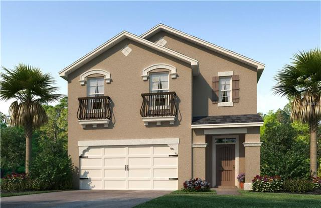 138 San Carrara Drive, Bradenton, FL 34208 (MLS #T2923837) :: Medway Realty