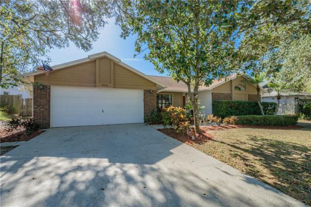 2556 Brimhollow Drive, Valrico, FL 33596 (MLS #T2923851) :: Griffin Group
