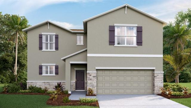 11503 Storywood Place, Riverview, FL 33578 (MLS #T2923854) :: Team Bohannon Keller Williams, Tampa Properties