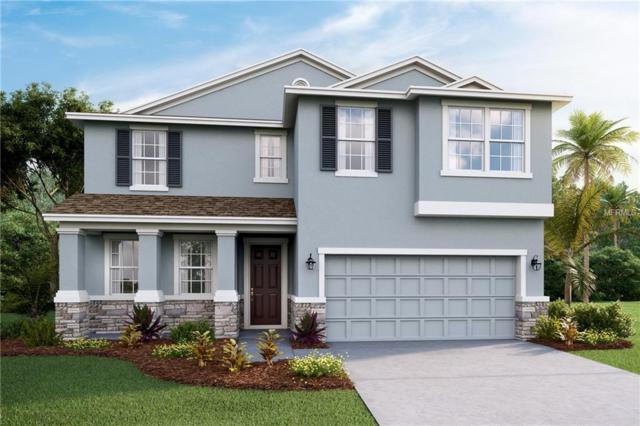 11414 Warren Oaks Place, Riverview, FL 33578 (MLS #T2923862) :: Team Bohannon Keller Williams, Tampa Properties