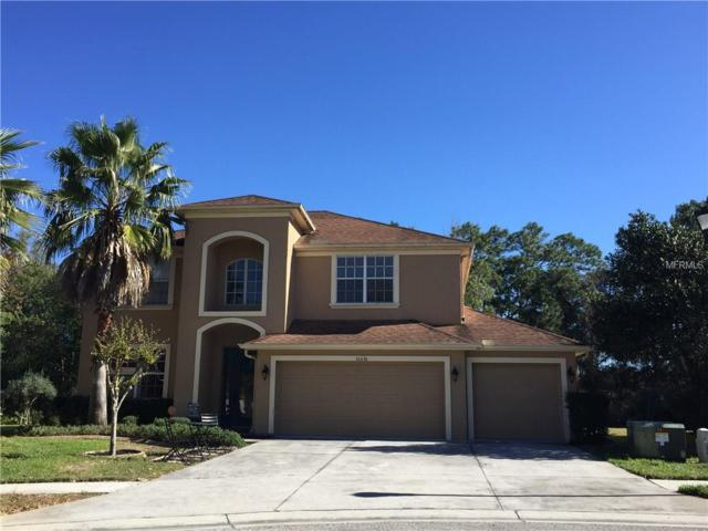 10636 Deerberry Drive, Land O Lakes, FL 34638 (MLS #T2923870) :: Griffin Group