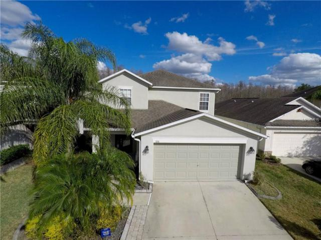 3216 Herne Bay Court, Land O Lakes, FL 34638 (MLS #T2923871) :: Griffin Group